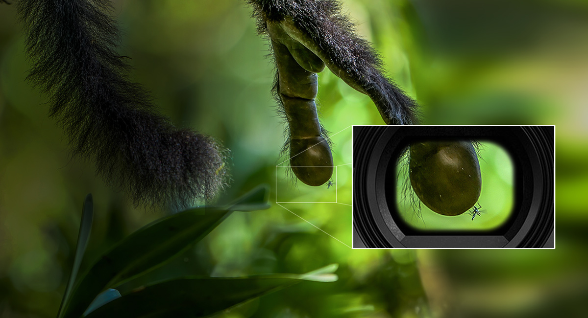 Panasonic_LUMIXG_DC-G9EG_Scharfer-OLED-Sucher
