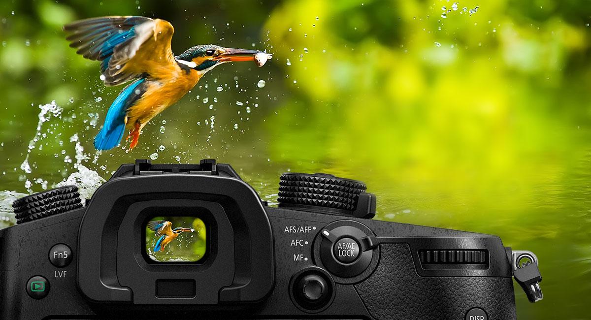 Panasonic_LUMIX-G-Wechselobjektivkamera_DC-GH5_Grosser-OLED-Sucher-mit-3-7-Mio-Bildpunkten