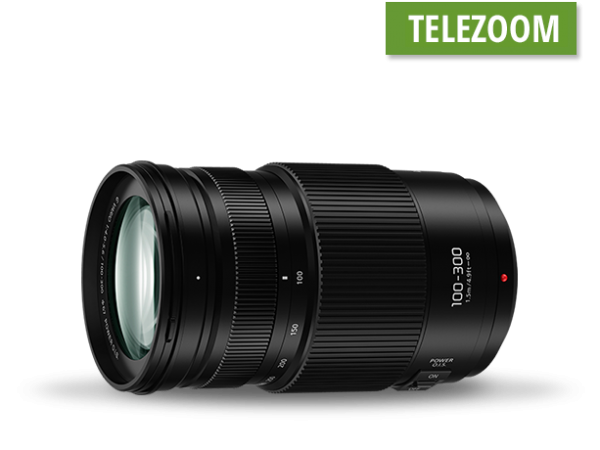 Panasonic Lumix 100-300mm f4.0-5.6 G Vario
