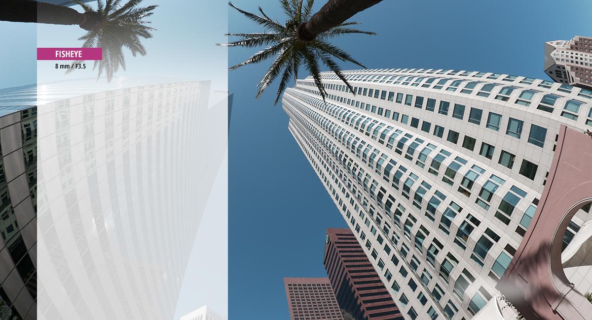 Panasonic_LUMIX-G-Objektiv_H-F008_Eine-neue-Perspektive-Fisheye